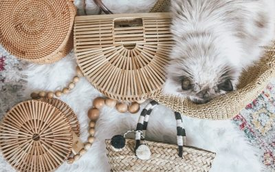 Chic Accessory Trends for Summer